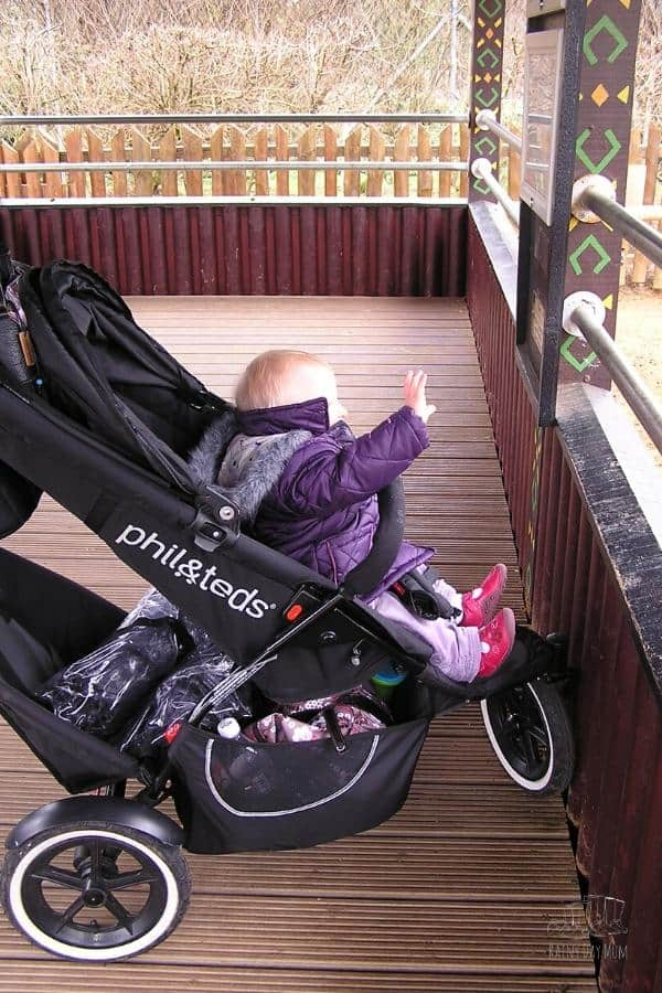 don't forget the stroller at the zoo it comes in extra handy for little legs as well as carrying all your stuff
