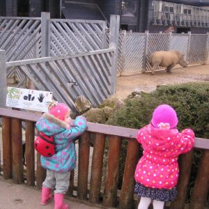 Top Tips for Visiting the Zoo with Your Toddlers