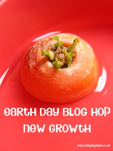 Earth Day Blog Hop new growth experiment