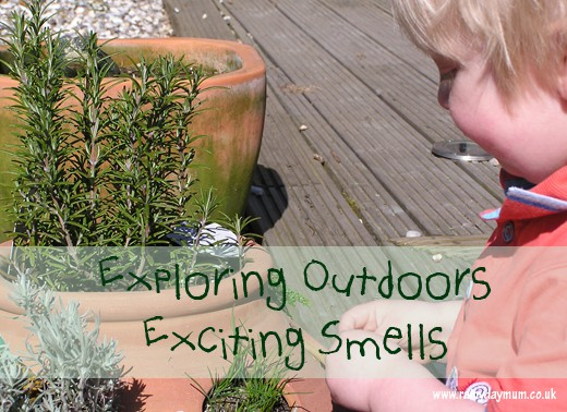 Exploring the sense of smell