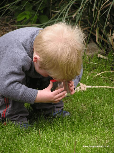 Hunting and examining bugs in the garden