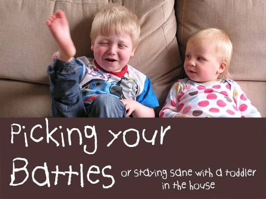Picking you battles - staying sane with a toddler in the house
