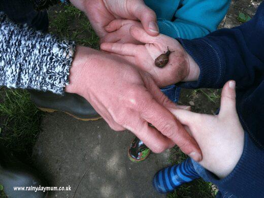 Toddler holding snail