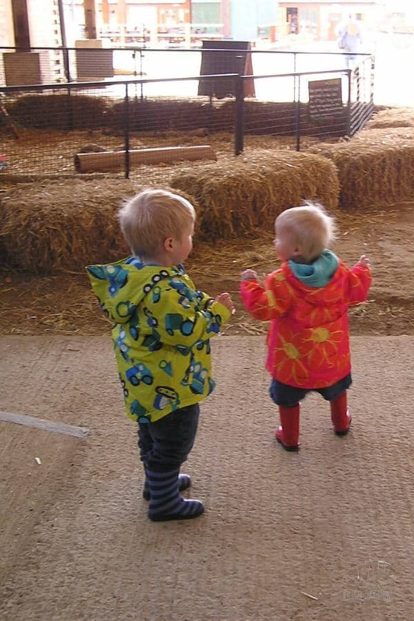 toddlers in raincoats and wellies at the farm in spring