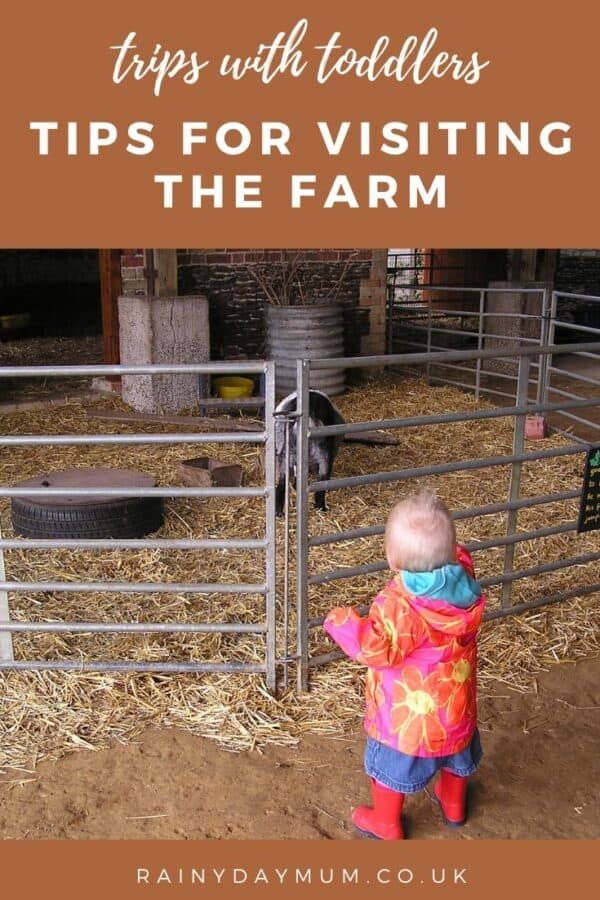 trips with toddlers - visiting the farm