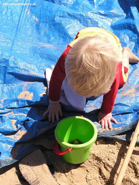 on beach nature study