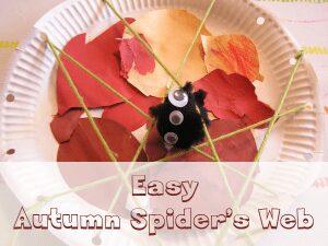 spiders web craft