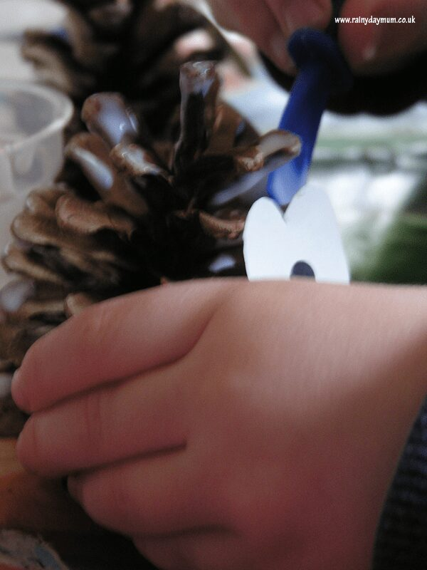 making pine cone owls