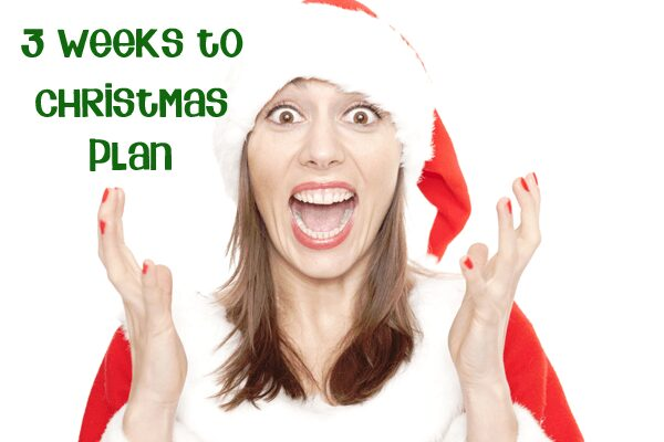 Christmas planning 3 weeks to go