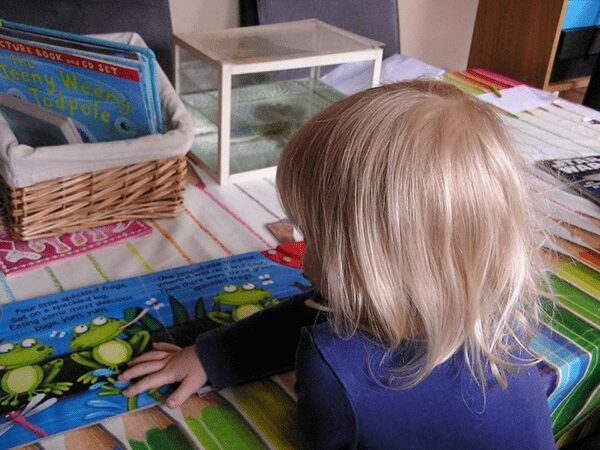 a toddler reading a book about frogs in front of a tank with frogs in.