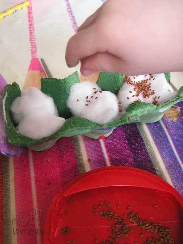 growing cress with kids a fun craftivity to create growing caterpillars