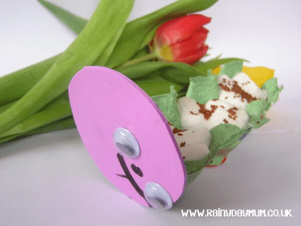 cress caterpillar a fun way to grow cress seeds with kids