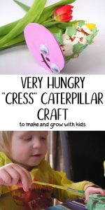 Very Hungry Cress Caterpillar craft to make and then grow with toddlers and preschoolers