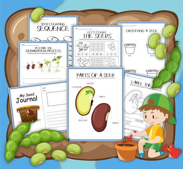 seed journal and activities printables showing the pages from Rainy Day Mum Shop