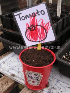 Grow your own Ketchup with kids - get toddlers growing with some inspiration for grow your own Heinz Ketchup