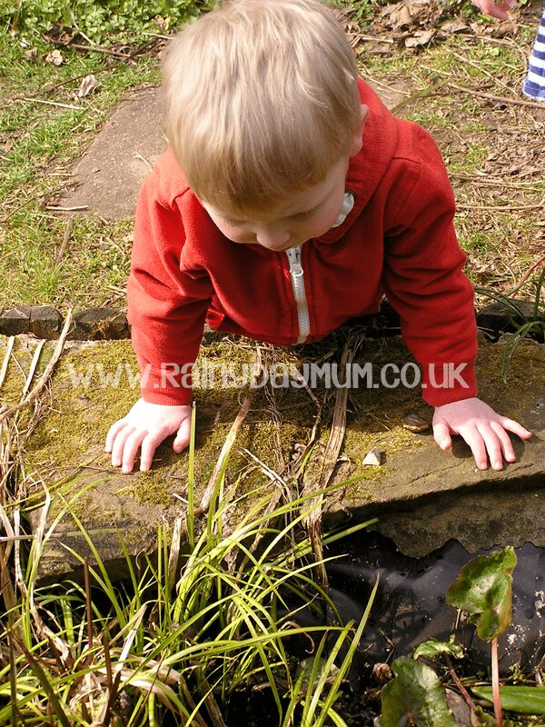 Exploring Nature and recording the finds with simple Nature Journalling for Preschoolers