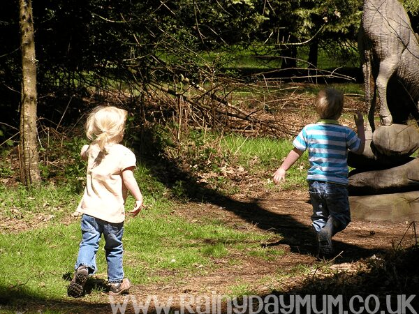 kids in the forest