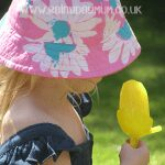 Ever so simple Ice Pops for kids to make with Busy Mamas perfect to keep cool this summer