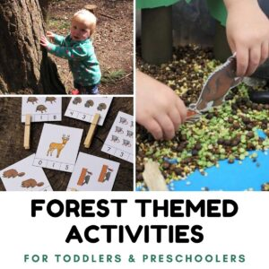 Forest themed activities for toddlers and preschoolers to do in the woods and at home
