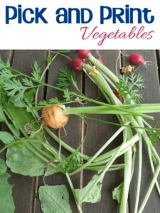 Pick and Print vegetables bring Oliver's Vegetable by Vivian French Alive for Kids through the Virtual Book Club for Kids Summer Camp
