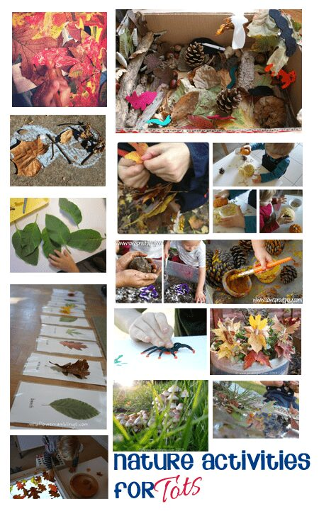 Fun Activities, Crafts and Play ideas for tots based around Natural objects and Nature