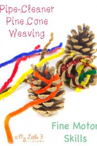Nature inspired craft – Pine Cone Weaving