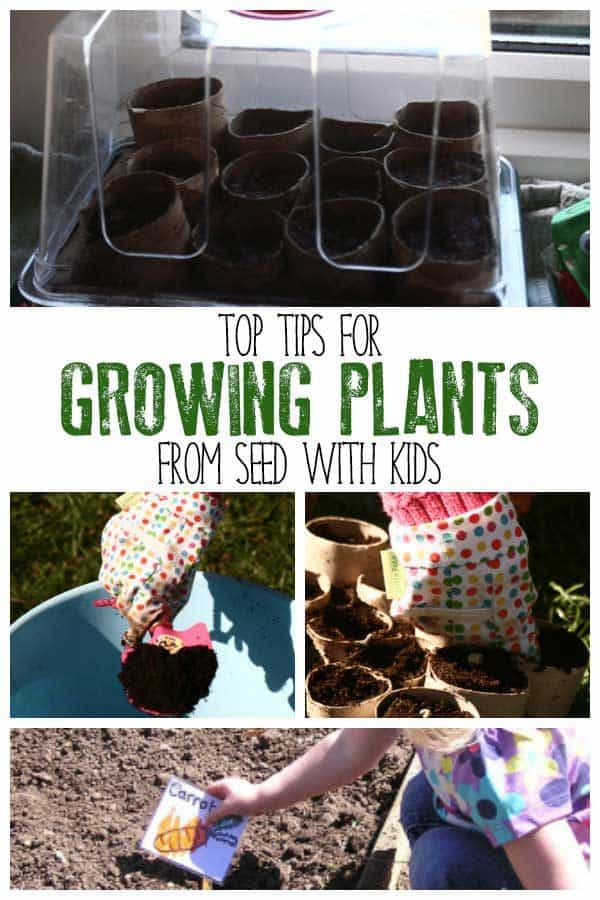Gardening with Kids – Starting off seeds