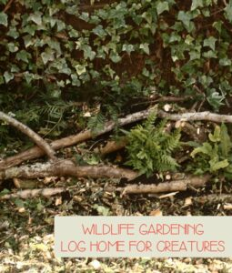 wildlife gardening with kids - creating a log home