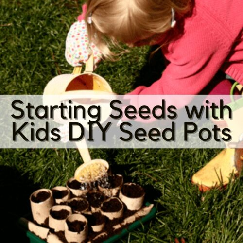 Growing Seeds with Kids in Recycled Seedling Pots