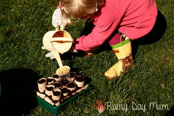 preschool girl watering seeds she's just planted in homemade seed trays from toilet roll tubes