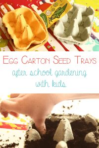 After School gardening for kids - egg carton seed trays
