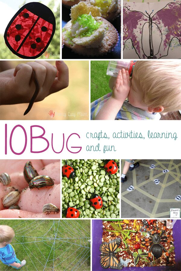10 bug activities crafts and learning fun