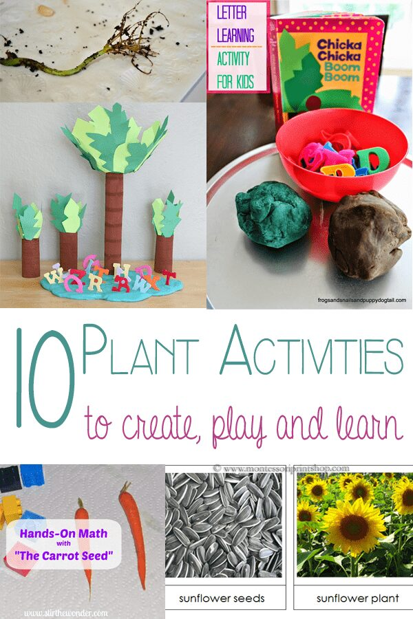 10 Plant activities to create, play and learn with.