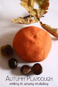 Autumn Playdough - working on sensory vocabulary