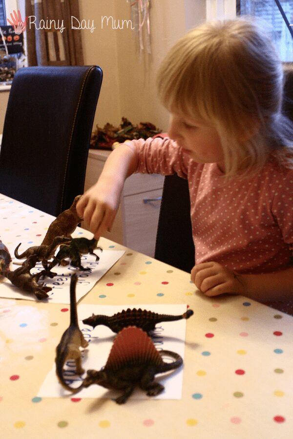 Classification and sorting of dinosaurs working on science and math knowledge with preschoolers