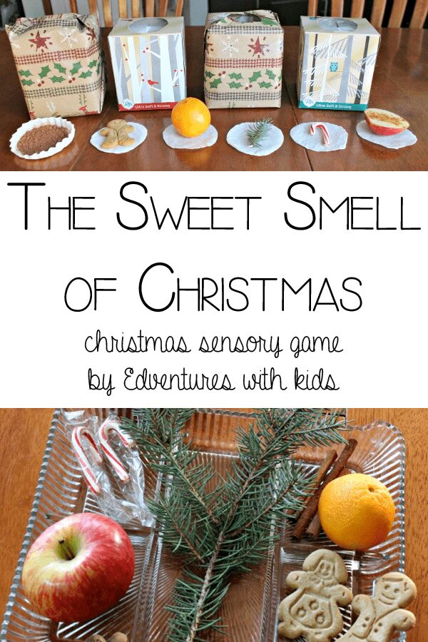 Sweet Smell of Christmas Sensory Game for Kids