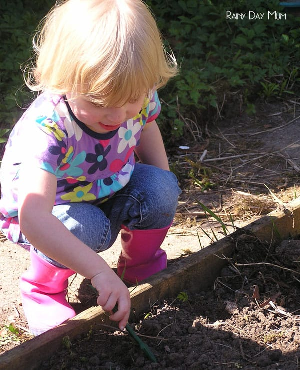 To plant a garden is to believe in tomorrow and kids are never to young to start - choose varieties of seed that they will enjoy seeing grow and that they can use their senses to explore.