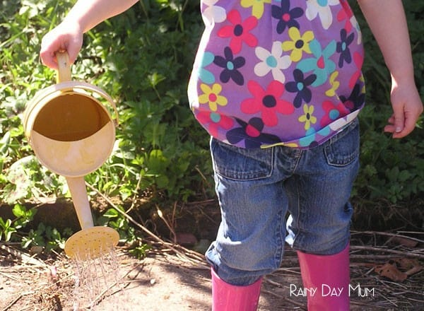 toddler watering seeds and garden flowers