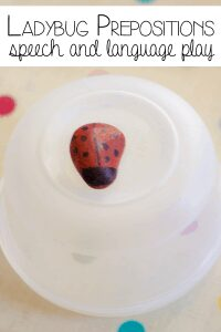 Ladybug Prepositions - speech and language play for young children