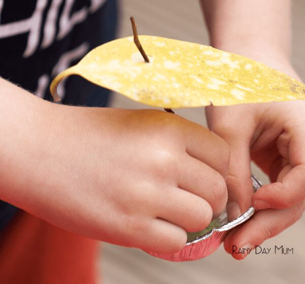 Pie Tin Boats - challenge the family this summer with this simple engineering challenge to see who can make a boat out of pie cases and get it to go the fastest across the water.