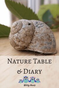 Go on a nature hike this summer and continue the learning with a nature table and journal - ideas for starting your own and how to do it with young kids