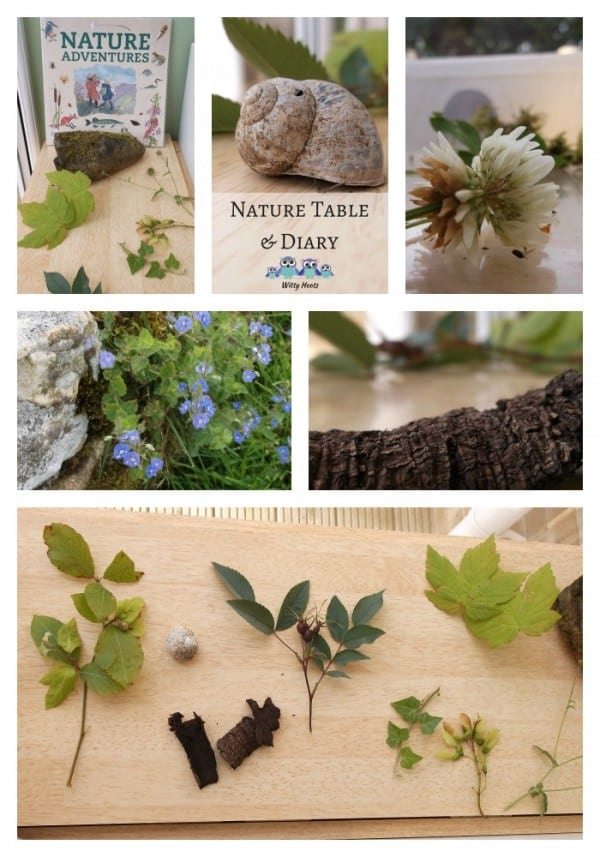 Collage of nature finds on the nature table after a summer woodland walk including leaves, stones, flowers and bark as well as the book Nature Adventures