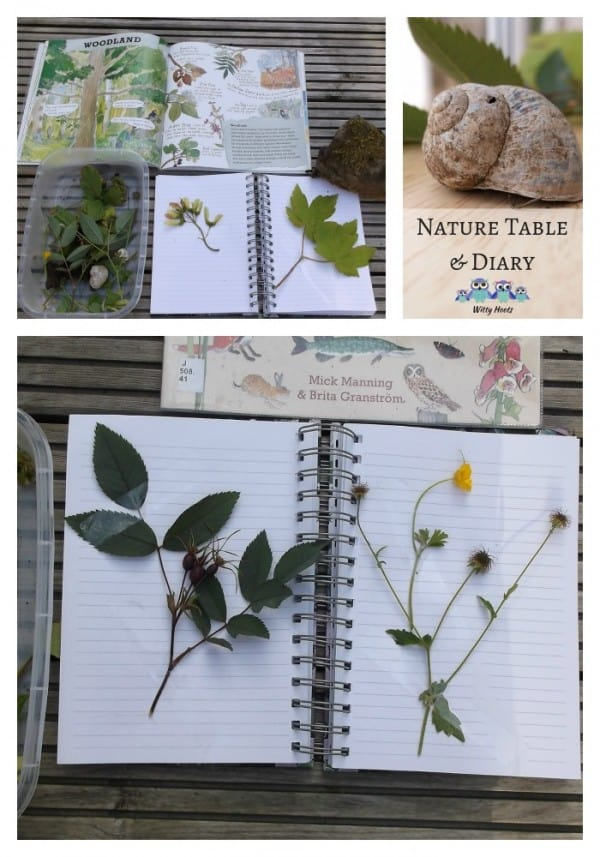Collage showing a child's nature diary with flowers and leaves pressed between the pages to label and annotate as they learn about the natural world.