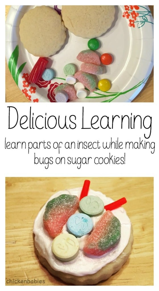 Read and play with bugs, have a bug day this summer with the kids, and pick up a book, play a game, create and then have some delicious fun and easy to make snacks