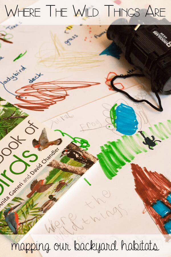 Where the wild things are inspired science, geography and maths activity for kids. Mapping our backyard habitats