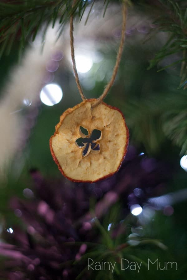 Apple Star Ornaments - natural decorations you can make at home with kids to decorate the Christmas Tree