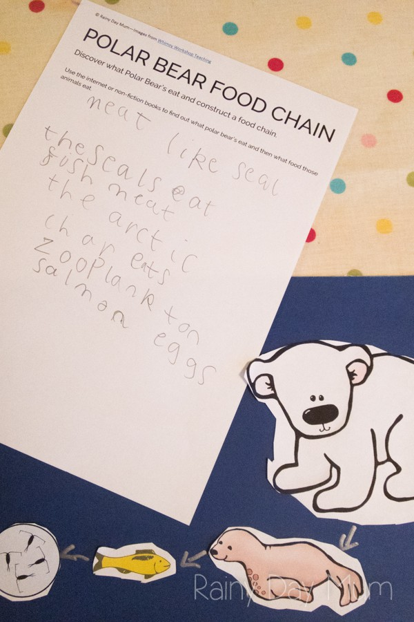 Early elementary science research project investigating food chains in the Polar Ecosystem with FREE printable