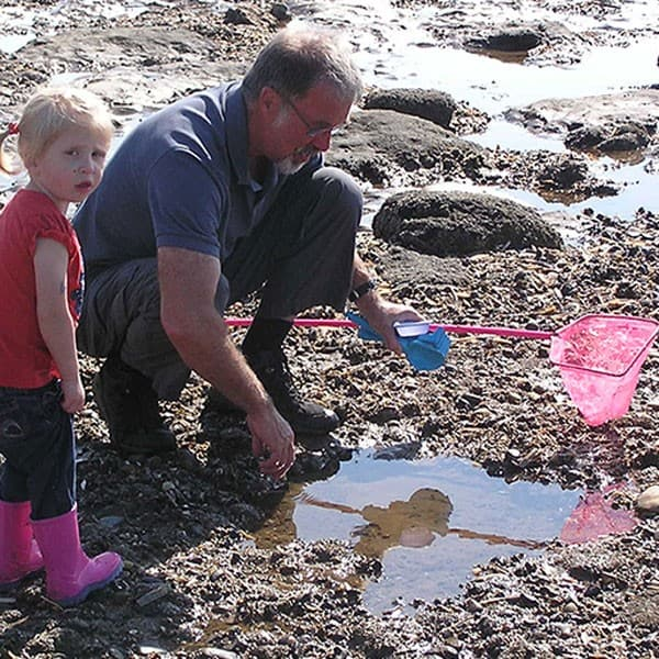 toddler and grandfather looking at the creatures in a rock pool in Norfolk, UK