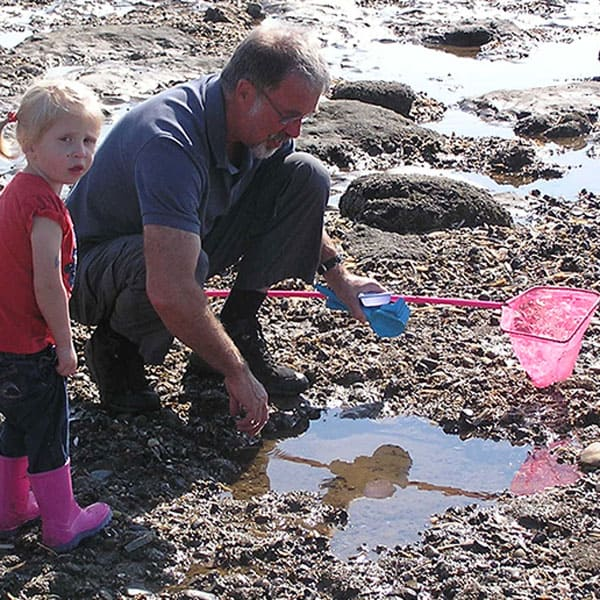 Advice and tips for rock pooling with kids from a marine biologist and environmental educator. Make a tip to the beach this summer a learning experience
