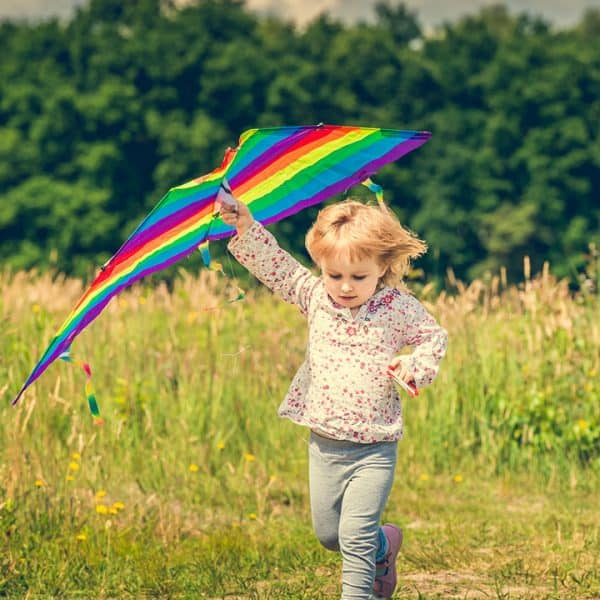"""Have fun this year as you go outside and sing along to Mary Poppins with """"Let's Go fly a Kite"""" and send your own soaring up into the air."""